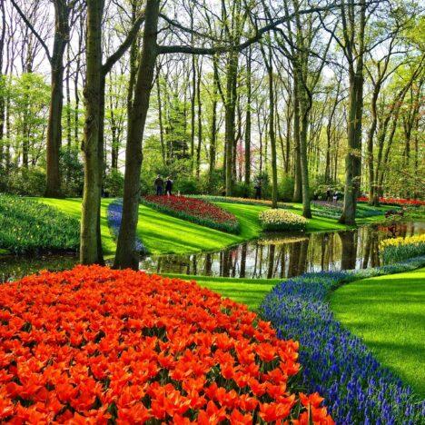 5 stappen om je tuin klaar te maken voor de zomer